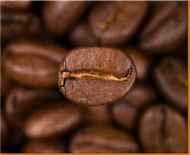 Coffee Beans Canvas Art Print