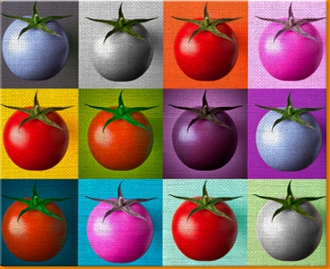 Tomato Collage Canvas Art Print