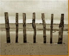 Beach Posts Canvas Art Print