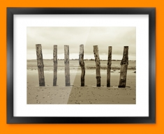 Beach Posts Framed Print