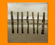 Beach Posts Napkins (Set of 4)