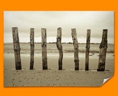 Beach Posts Poster