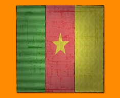 Cameroon Flag Napkins (Set of 4)