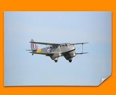 DH89 Dragon Rapide de Havilland Plane Poster