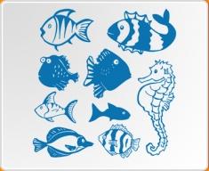 Fun Fish Set Wall Sticker