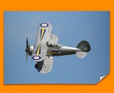 Gladiator Gloster Plane Poster