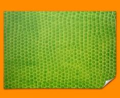 Green Snake Animal Skin Poster