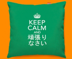 Japanese Keep Calm Carry On Funky Sofa Cushion 45x45cm