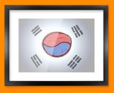 Korea Flag Framed Print