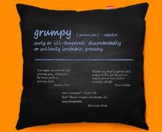 Grumpy Definition Funky Sofa Cushion