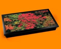 Maple Laptop Lap Tray