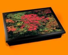 Maple Cushion Lap Tray