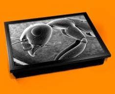 Micro Ant Cushion Lap Tray