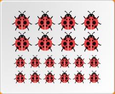 Multicoloured Ladybirds Set Wall Sticker