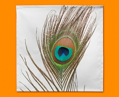Peacock Feather Napkins (Set of 4)