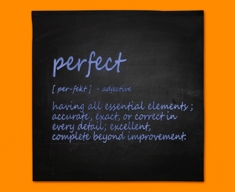 Perfect Definition Napkins (Set of 4)