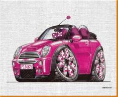 Pink Mini Canvas Art Print