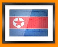 Republic Korea Flag Framed Print