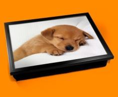 Sleeping Puppy Cushion Lap Tray