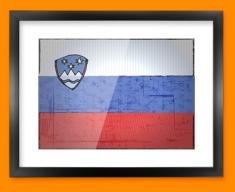 Slovakia Flag Framed Print