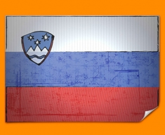 Slovakia Flag Poster