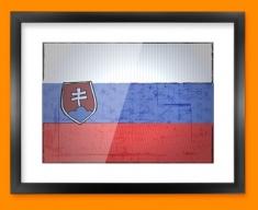 Slovenia Flag Framed Print