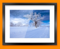 Snowy Road Framed Print