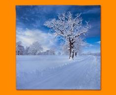 Snowy Road Napkins (Set of 4)