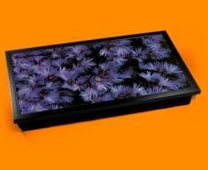 Soldanella Laptop Lap Tray