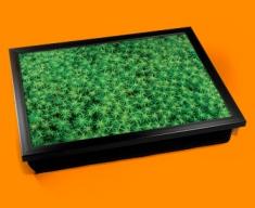 Spikey Moss Cushion Lap Tray
