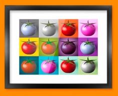 Tomato Collage Framed Print