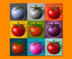 Tomato Collage Napkins (Set of 4)