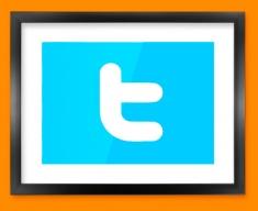 Twitter Logo Social Networking Framed Print
