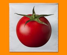 White Tomato Napkins (Set of 4)