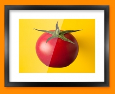 Yellow Tomato Framed Print