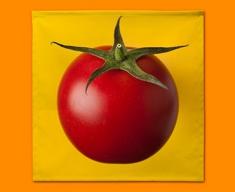 Yellow Tomato Napkins (Set of 4)