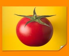 Yellow Tomato Poster