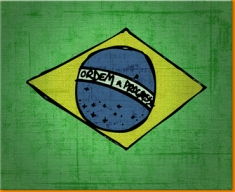 Brazil Canvas Art Print