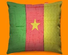Cameroon Flag Cushion 45x45cm