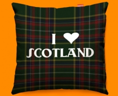 I Love Scotland Green Funky Sofa Cushion 45x45cm